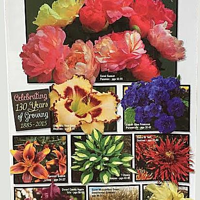 Imagen de un catálogo gratuito de Gilbert H. Wild & Son