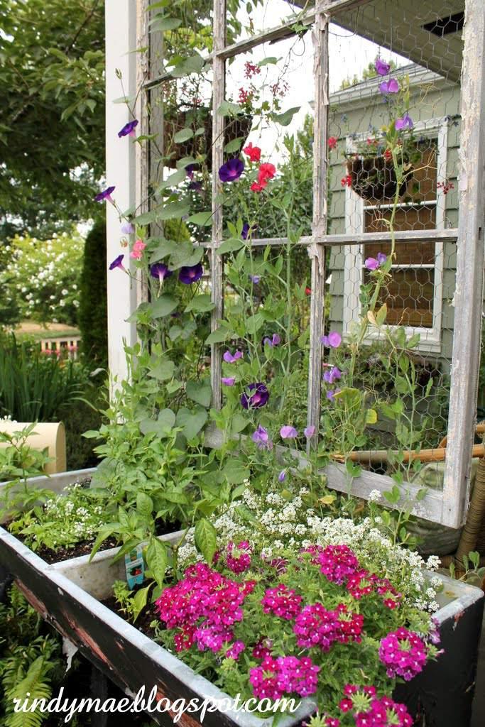 10 diy garden trellises that cost less than 20 diy garden trellis solutioingenieria Image collections