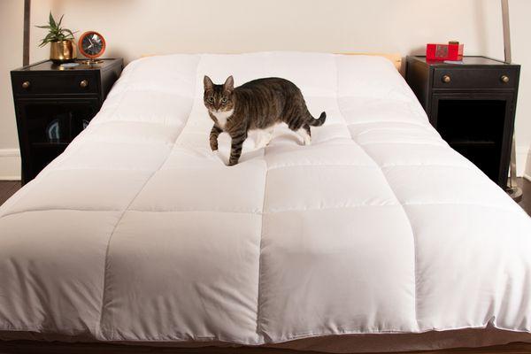 Utopia Bedding Comforter Duvet Insert