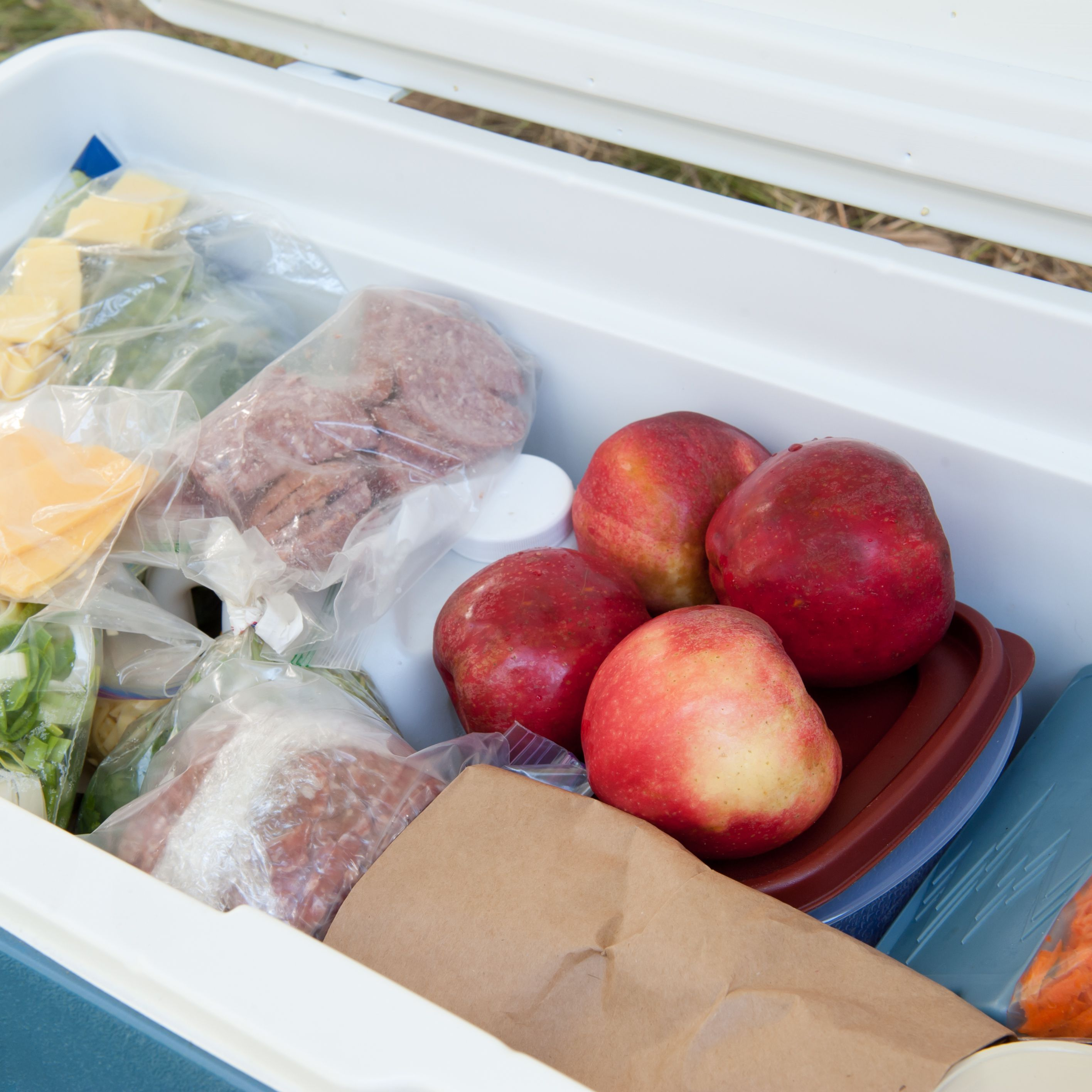 478275f70f5b The 8 Best Ice Packs for Coolers in 2019