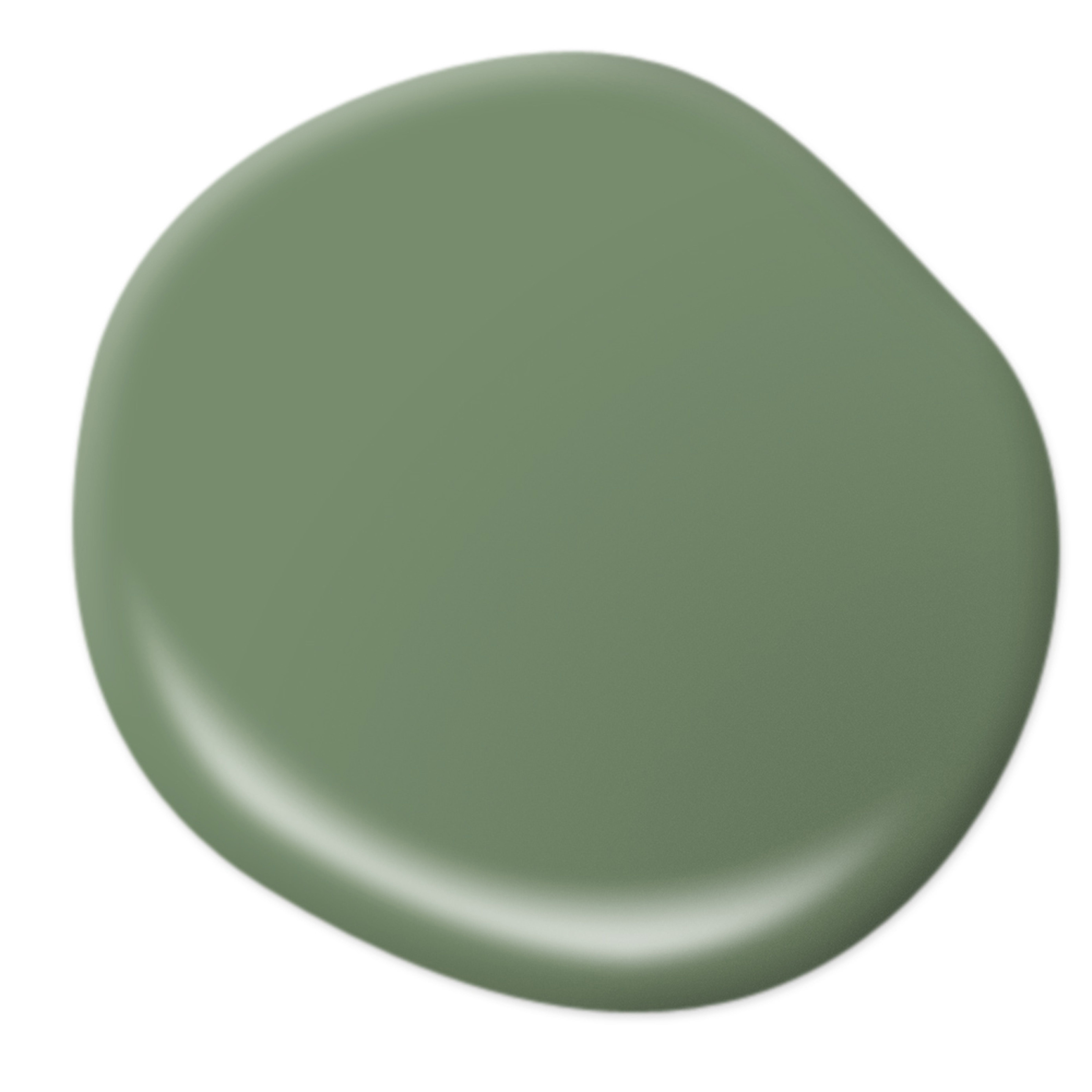 Best Beach Inspired Paint Colors Magnolia Green