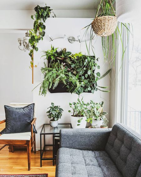 Stunning Living Wall Ideas For Any Room, Picture Ideas For Living Room Walls