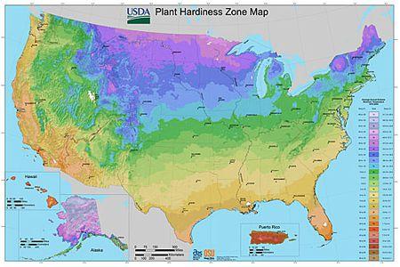 Plant Hardiness Zone Map Provided by USDA (Image)