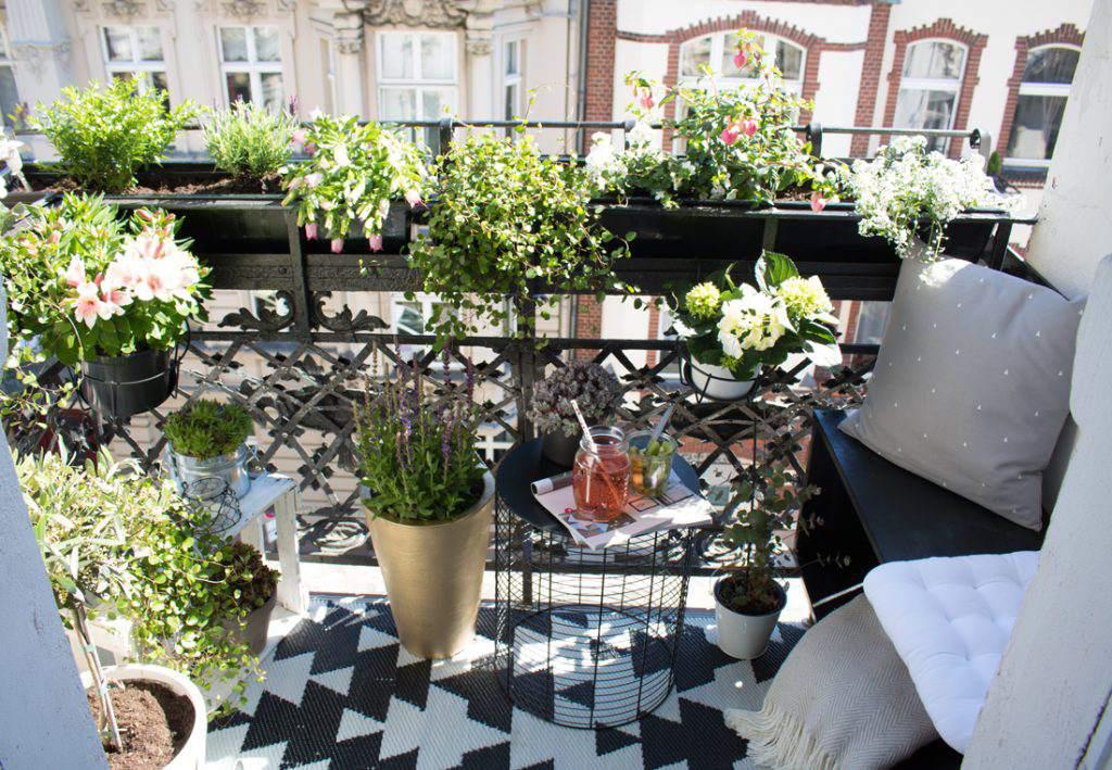 bonito balcón con plantas