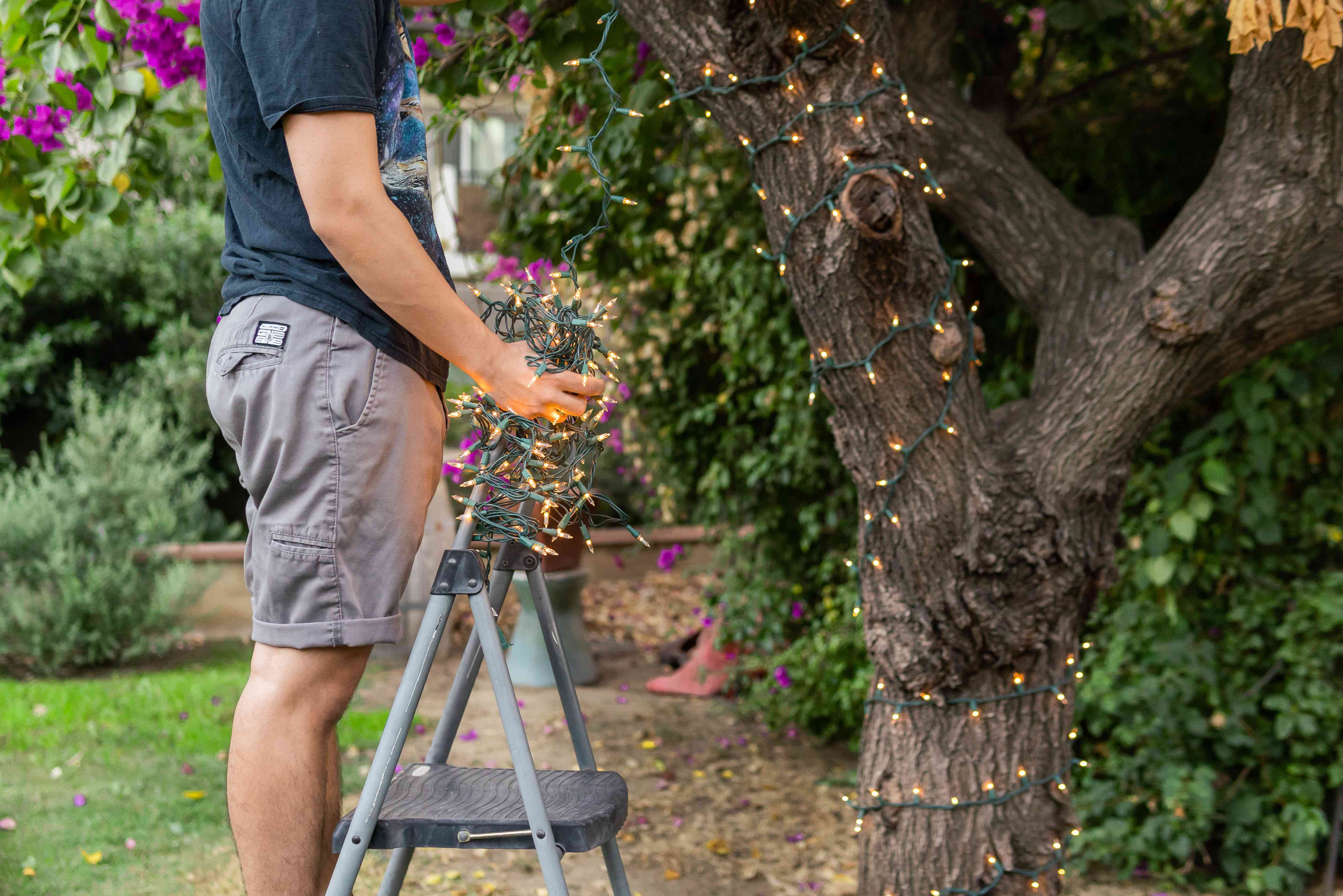 using a ladder to wrap stringlights