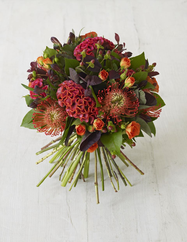 Fall wedding flower gallery alstromeria roses protea and celosia bouquet izmirmasajfo