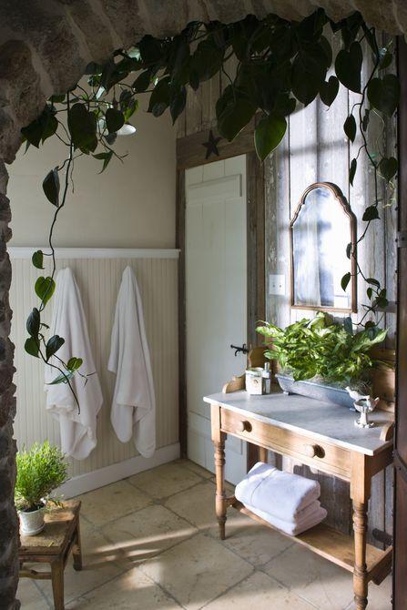 Cuarto de baño con plantas , Baño moderno en antigua casa de labranza