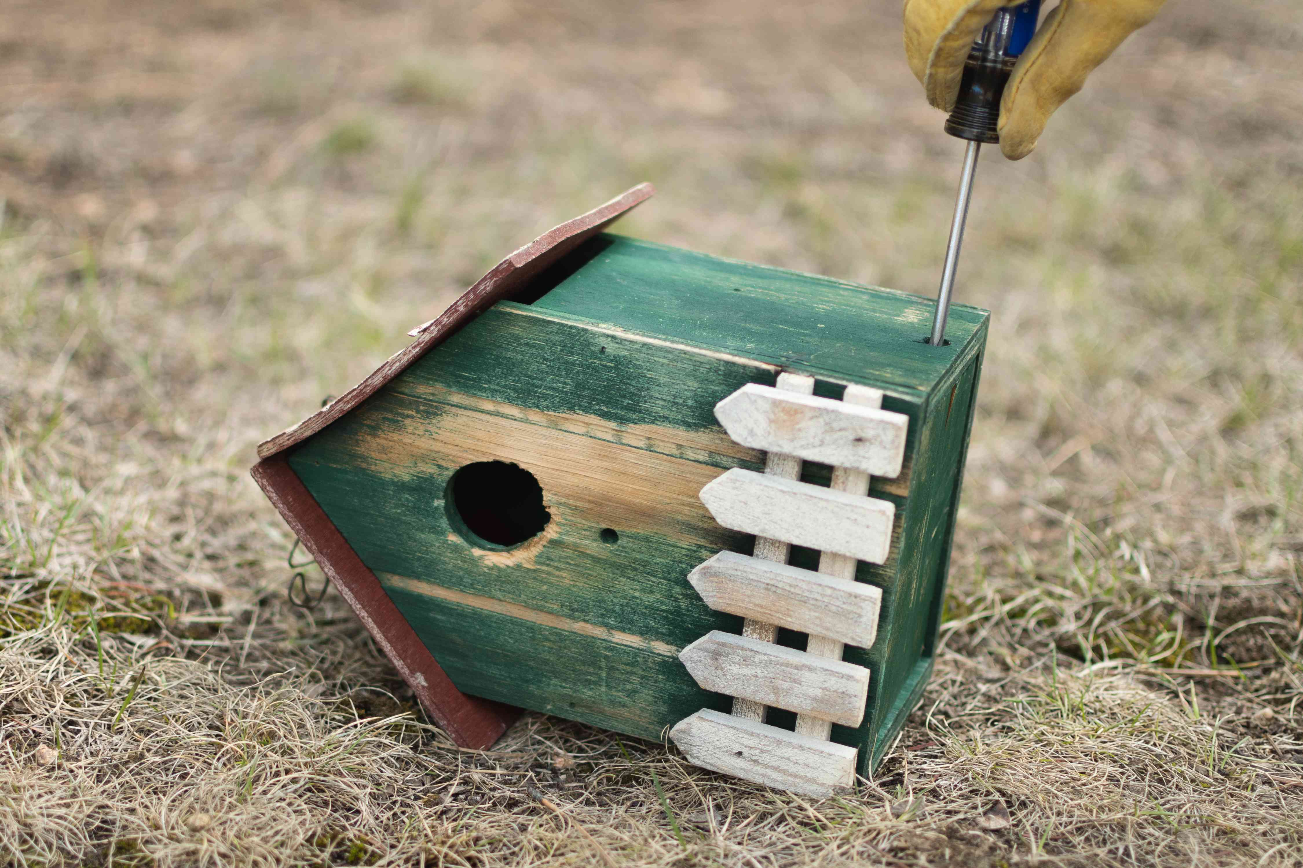 Wooden green birdhouse tipped on side to secure bottom with screwdriver