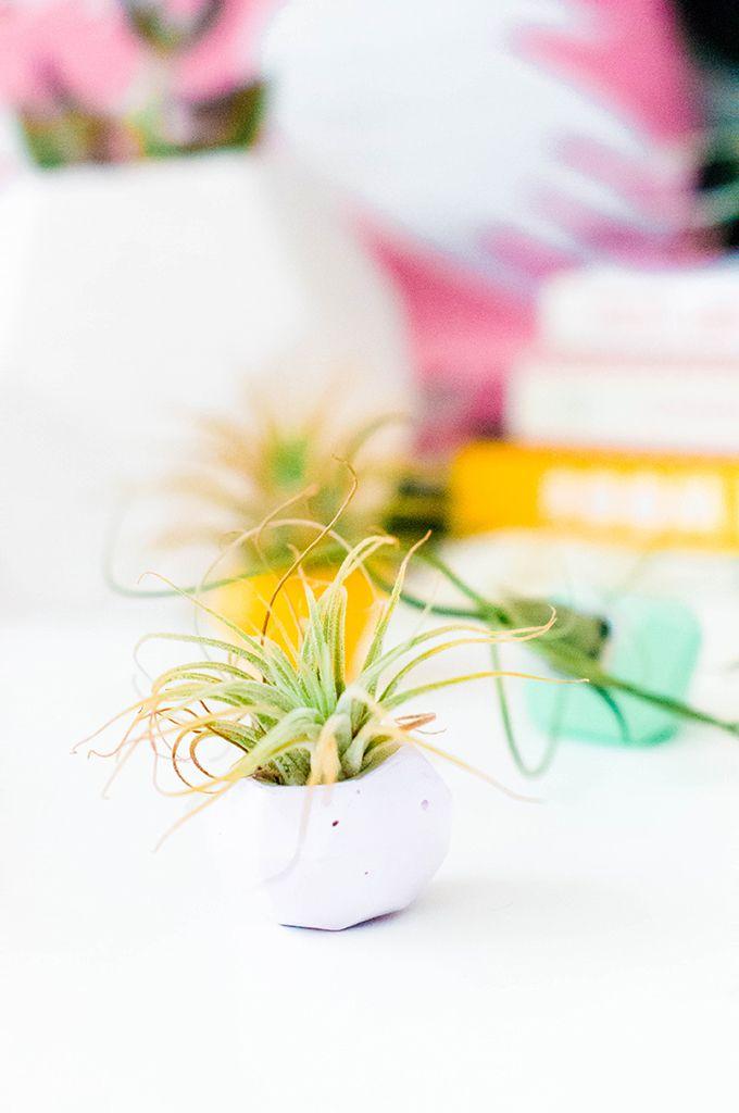 Tiny concrete planters on a desk