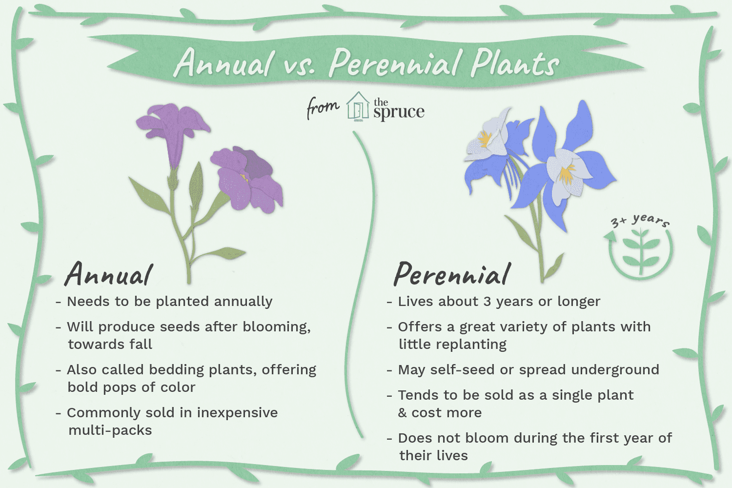 Annual Plants Vs Perennials
