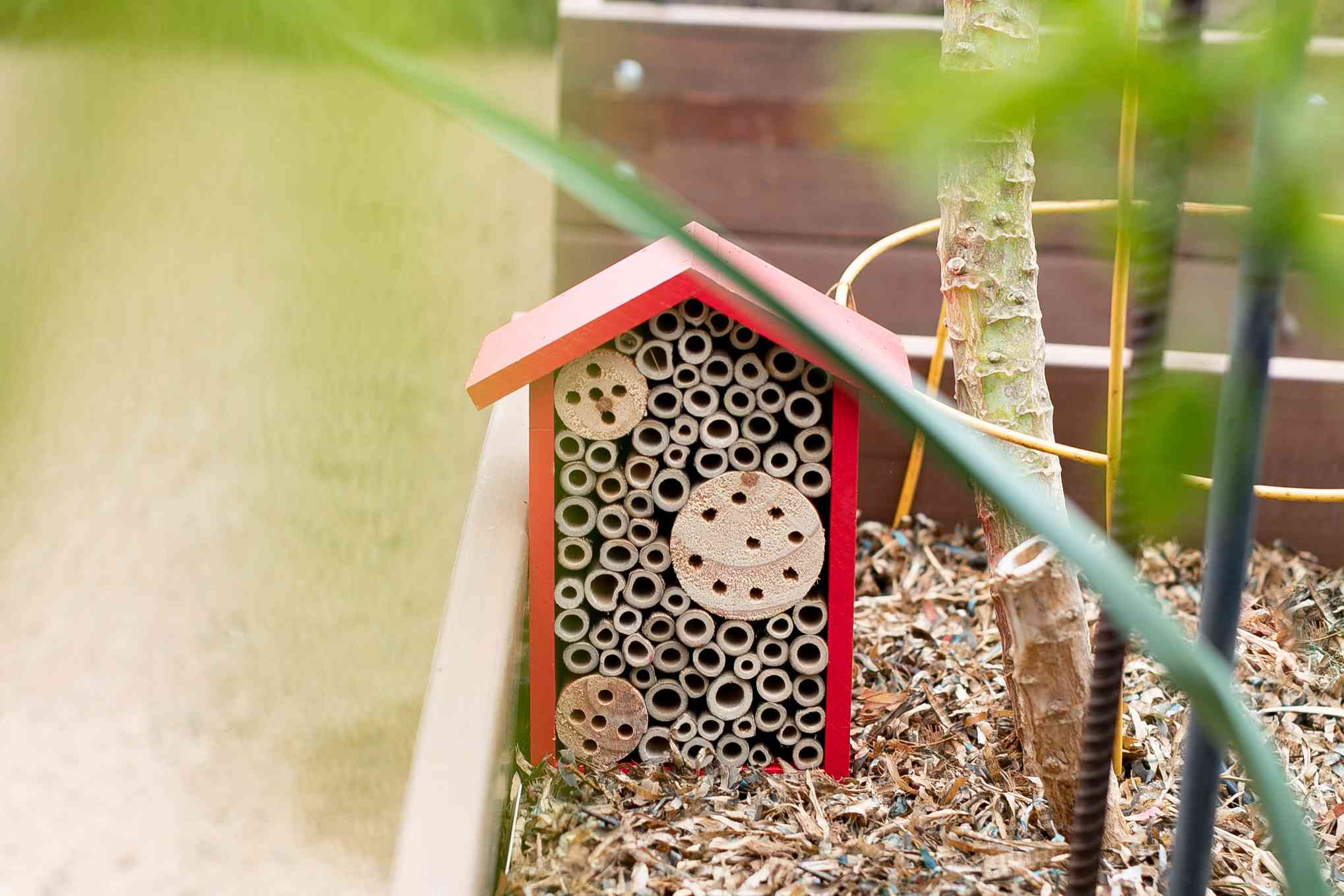 Red ladybug house to encourage good insects in vegetable garden against pests