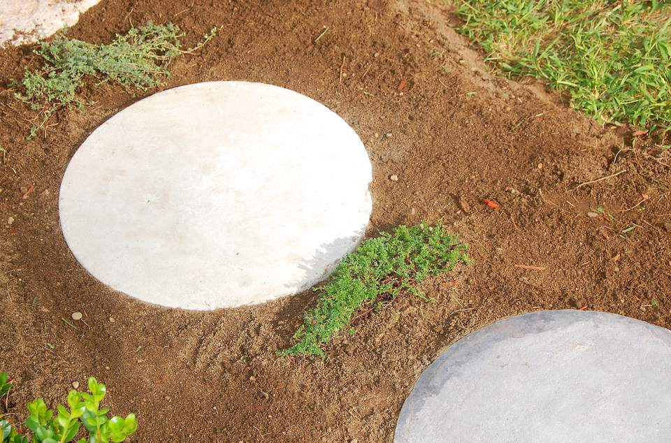 These garden stepping stones (image) are new. I interplanted them with creeping thyme.