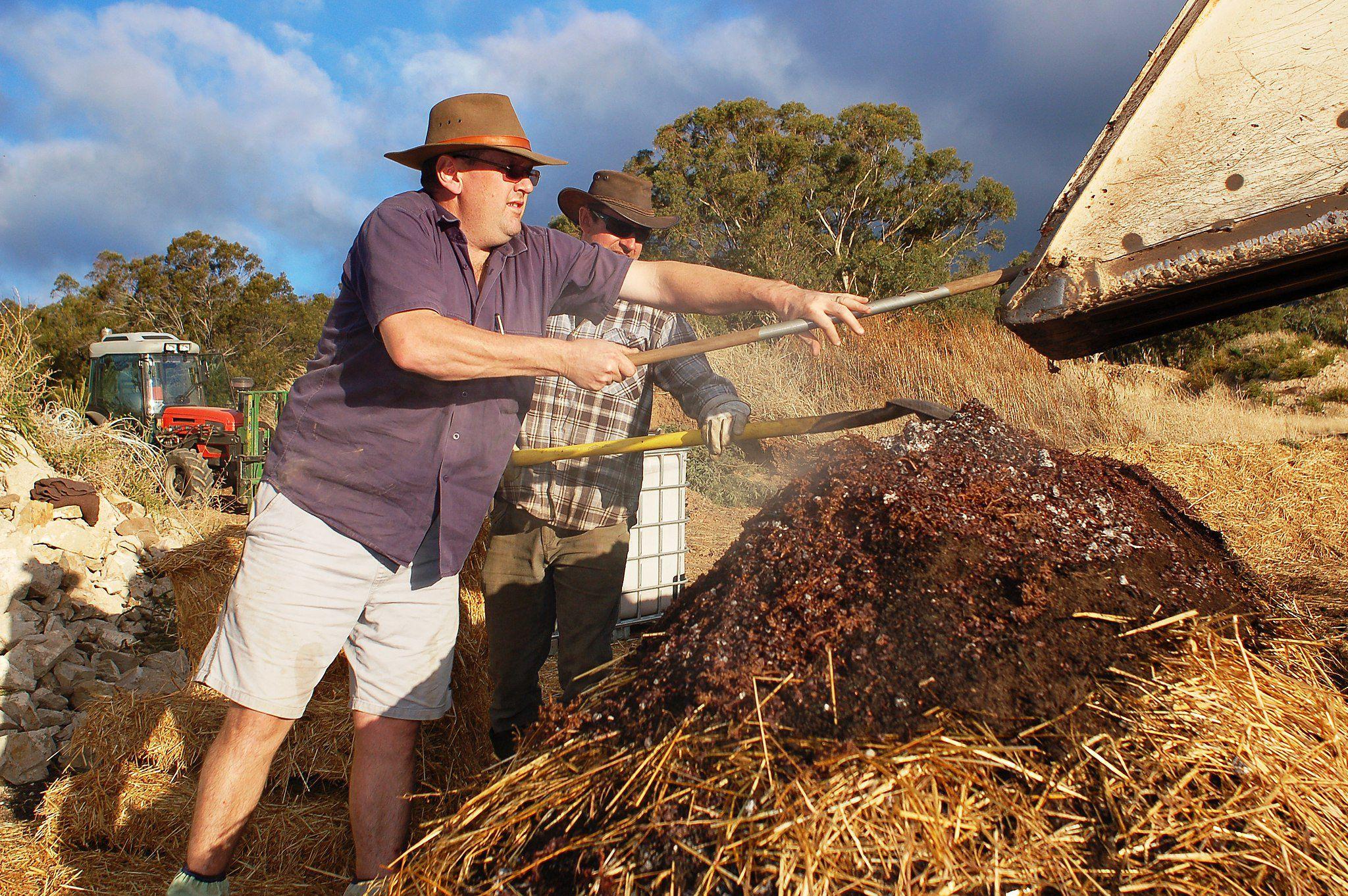 Granton Vineyard Tasmania biodynamic composting