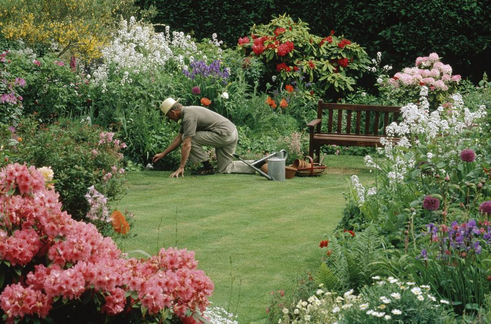 Summer Flower Garden Chores
