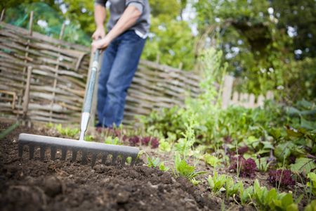 How to Improve Garden Soil With Amendments