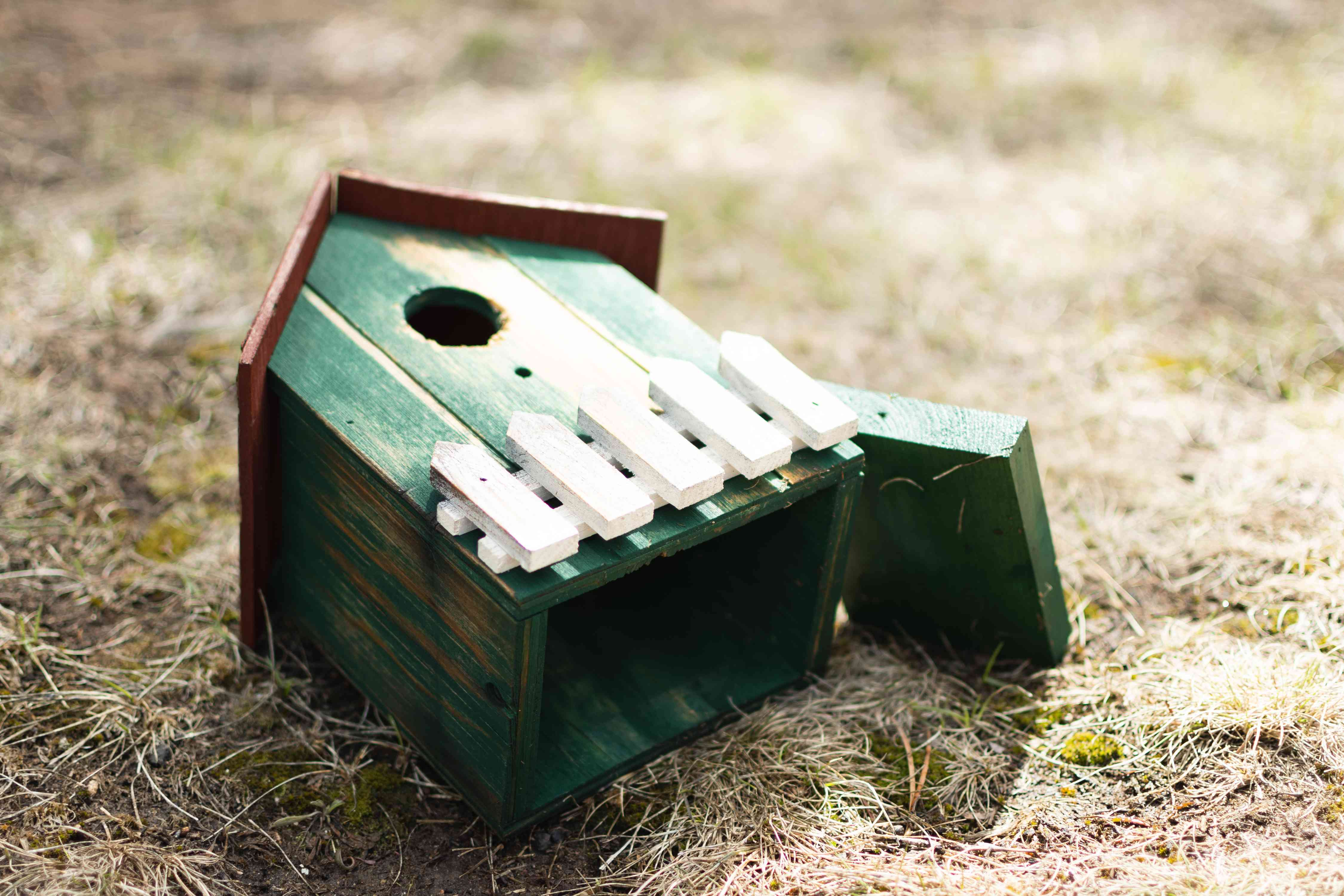 Wooden green birdhouse air drying in full sun on the ground