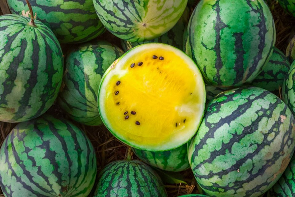 Yellow watermelons stacked on each other with a cut watermelon in the middle
