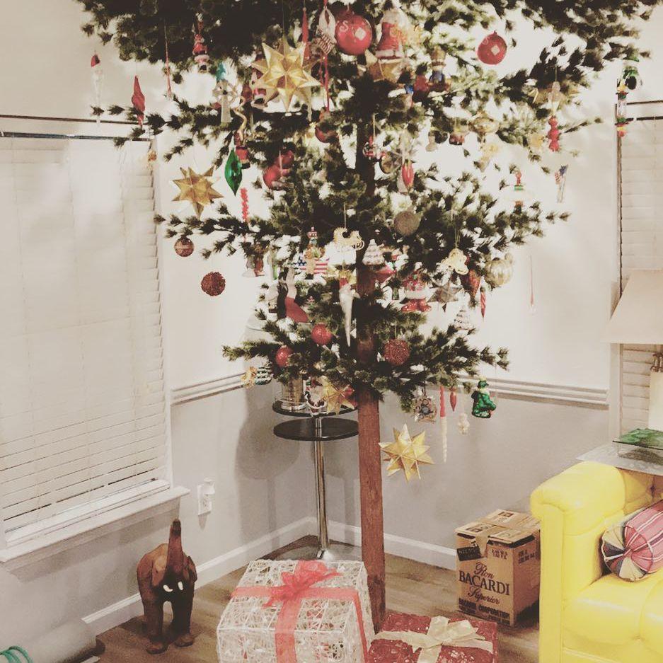 Upside down tree on a stick