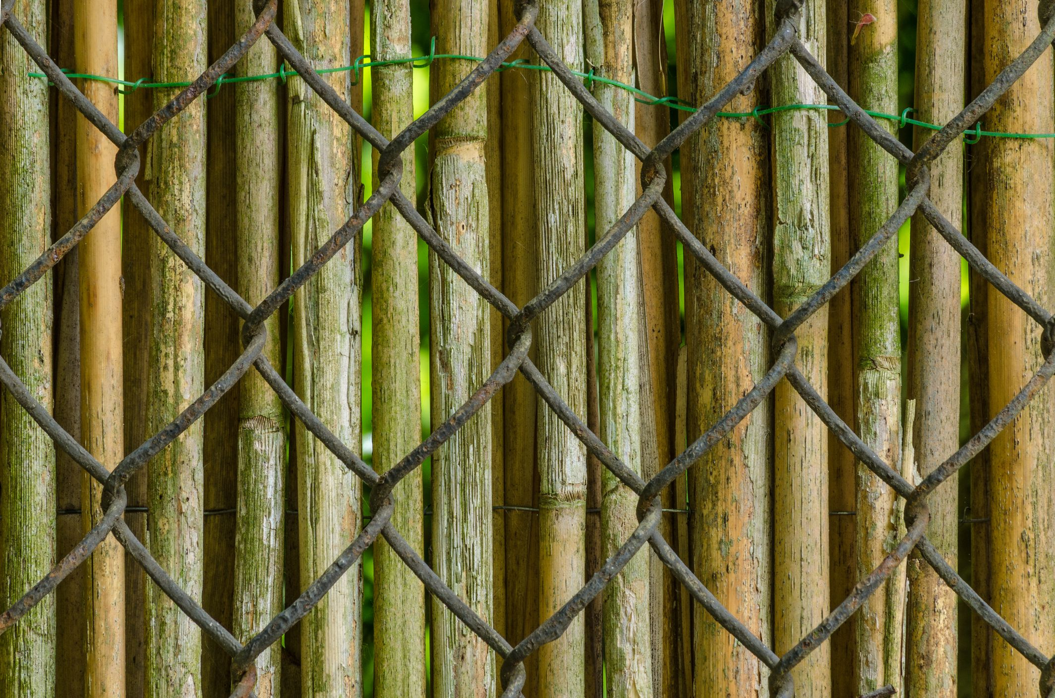 5 ways to cover up a chain link fence