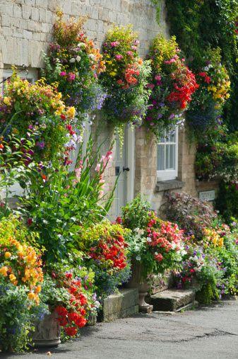 Flowering hanging basket ideas a wall garden mightylinksfo
