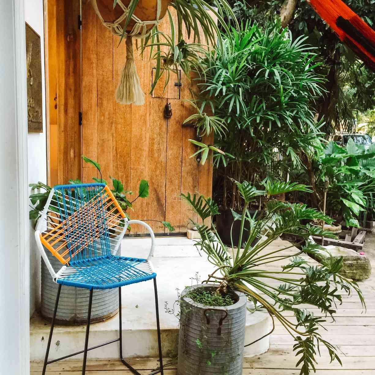 Plantas colgantes y silla pequeña