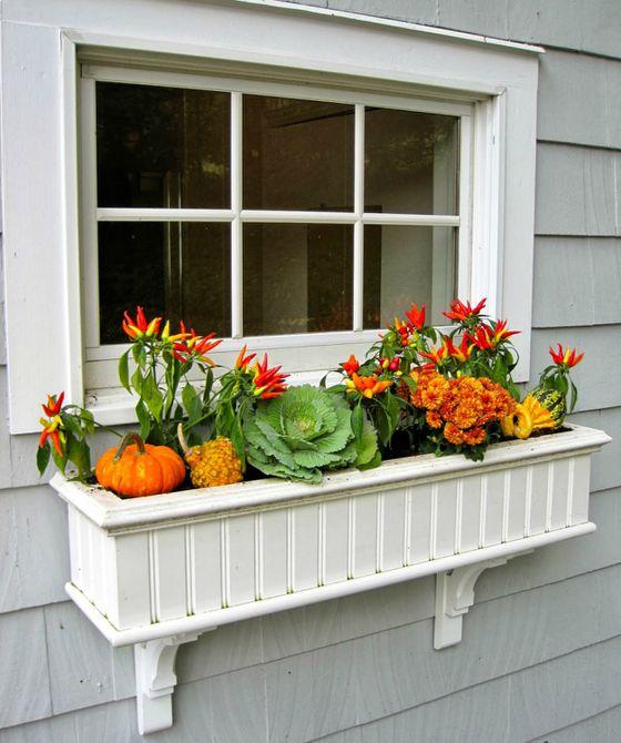 caja de ventana de caída