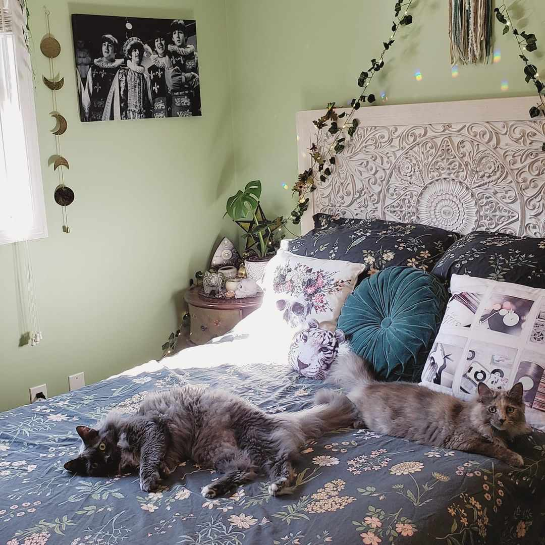 green aesthetic room