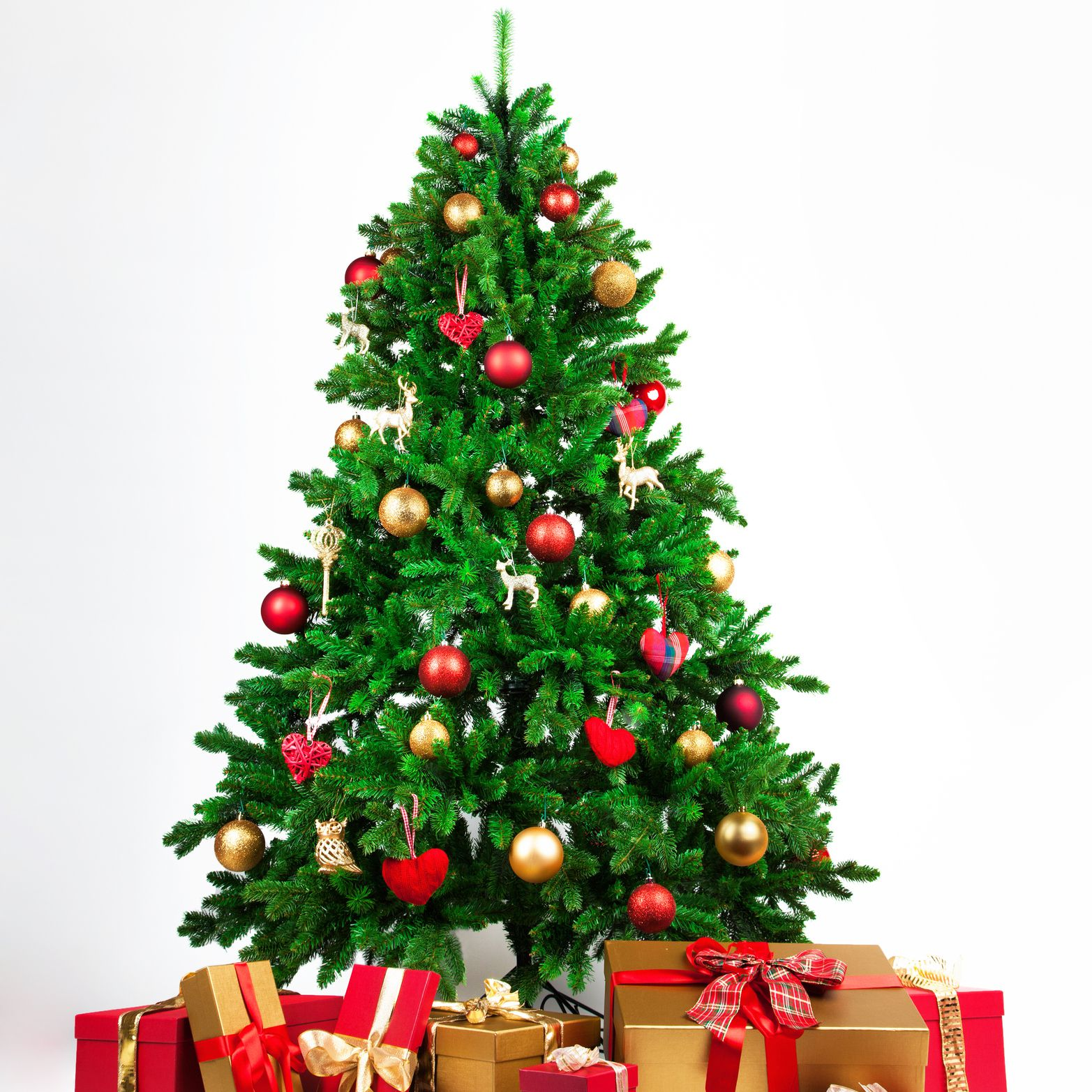 The 7 Best Places To Buy A Christmas Tree In 2021 We are sharing best christmas tree pictures photos collection 20120 with beautiful hd images for whatsapp, facebook, twitter, instagram, and pinterest. best places to buy a christmas tree