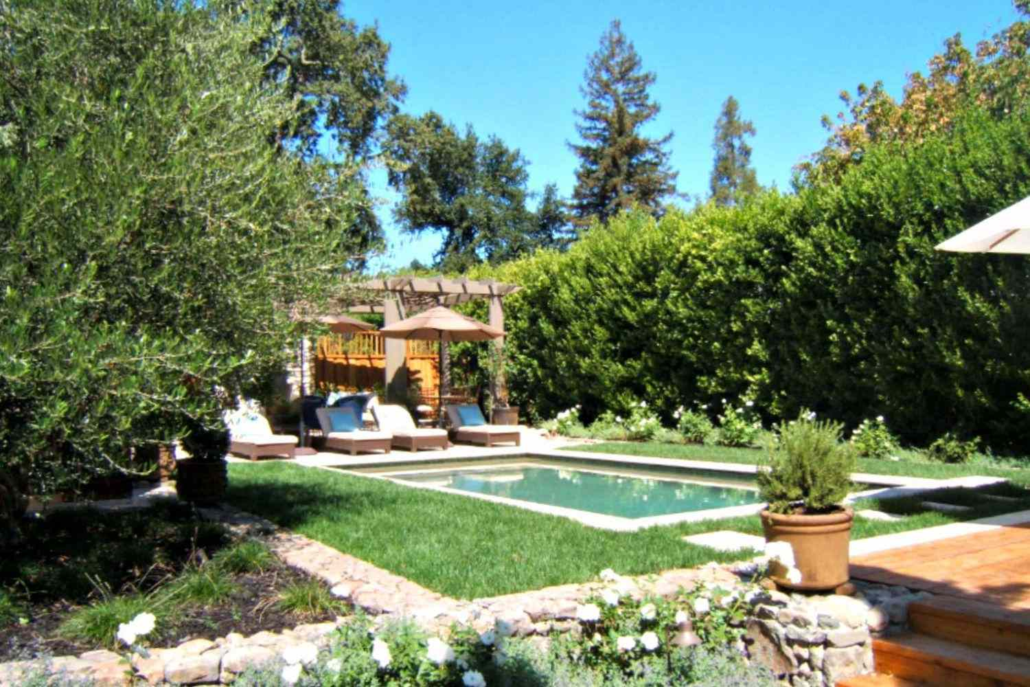 Mediterranean pool design with shrubbery fence and potted plants.