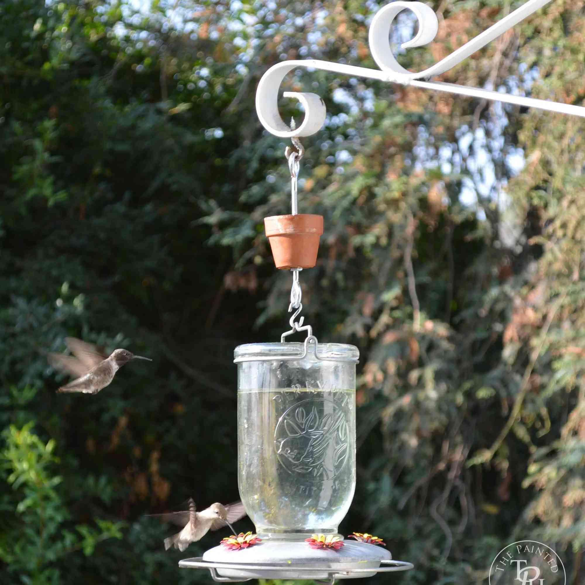 A hummingbird feeder with hummingbirds