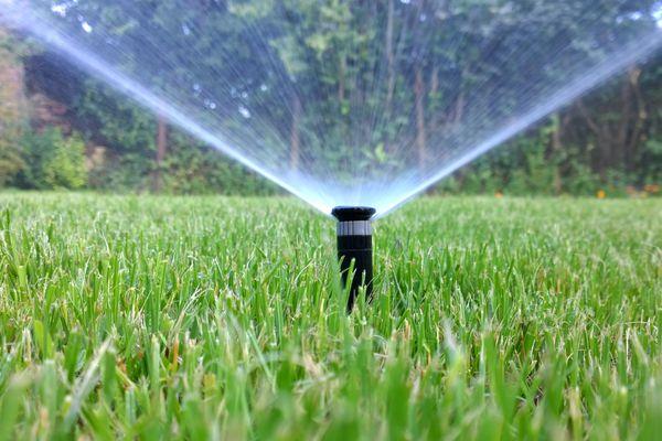 a sprinkler watering a lawn