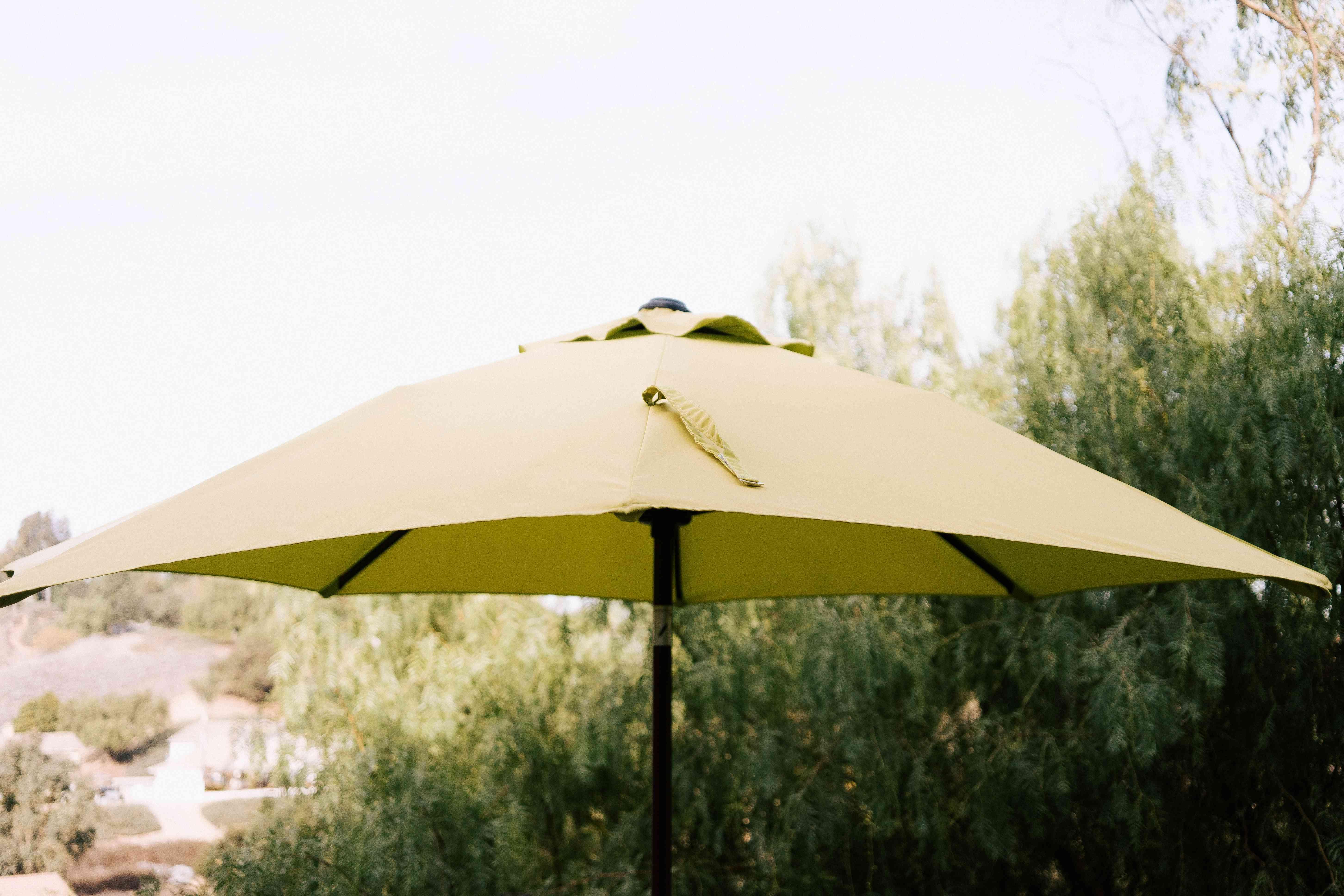 letting the umbrella dry