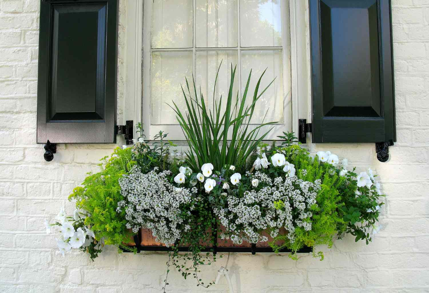 green and white spring window box