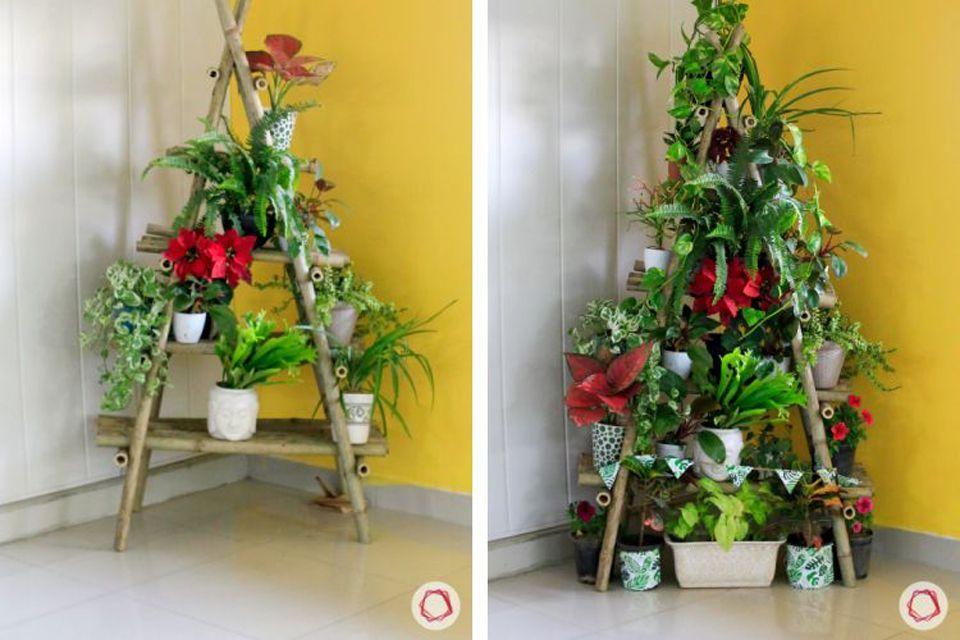 Christmas tree made of house plants