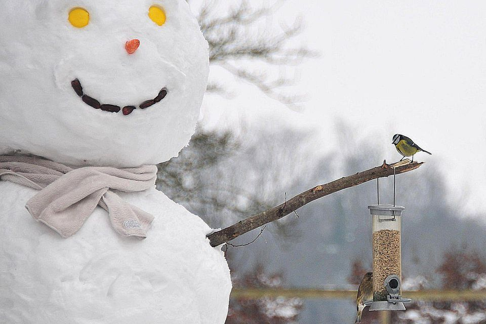 Snowman With Bird Feeder