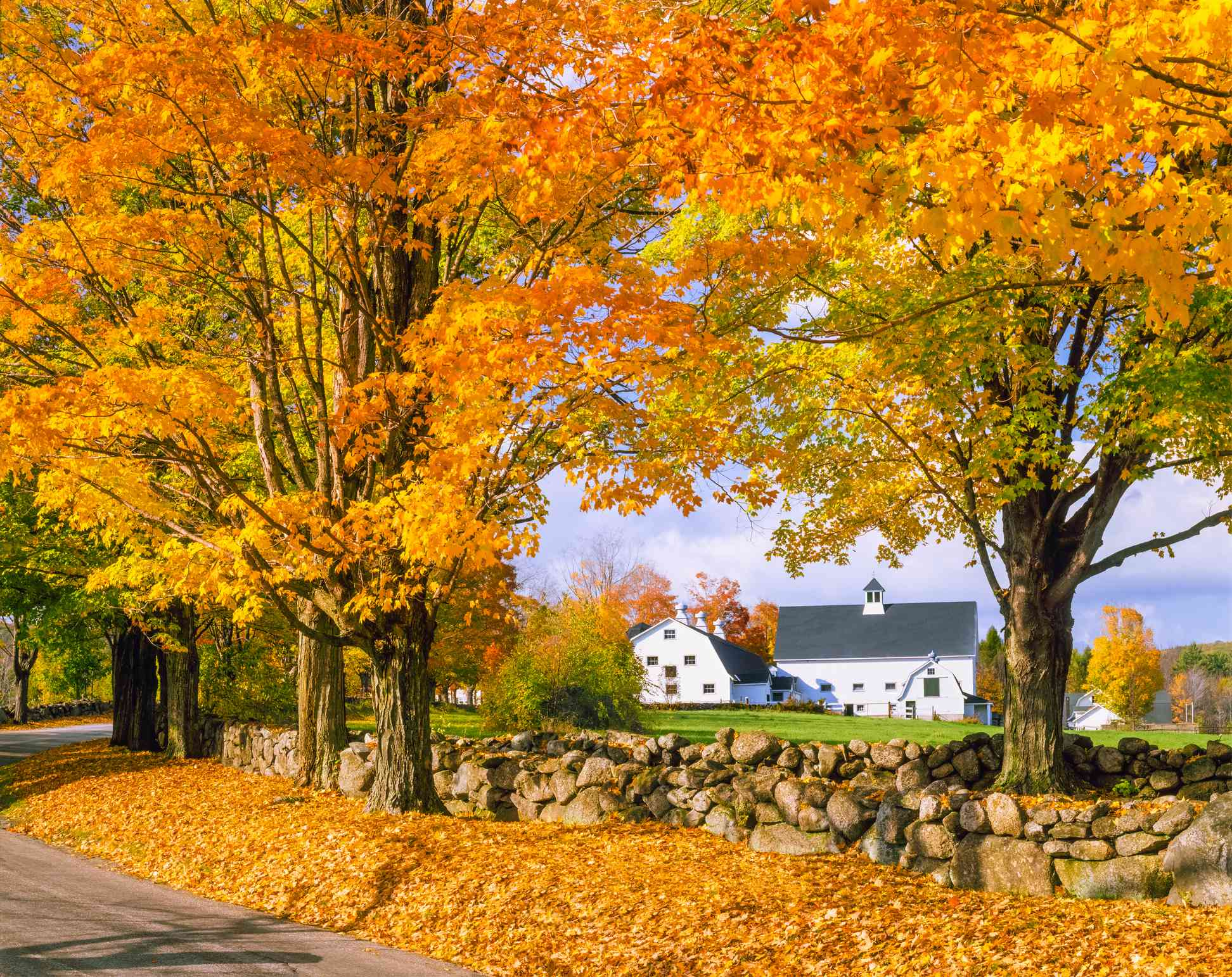 Autumn colors with farm in the White Mountains, NH