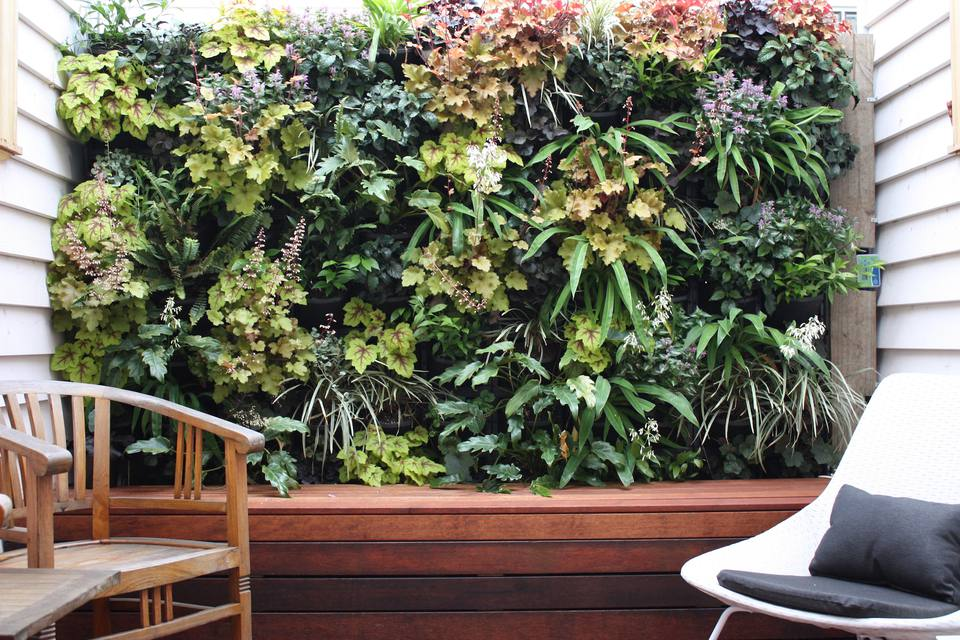 Create Great Feng Shui With Vertical Wall Gardens