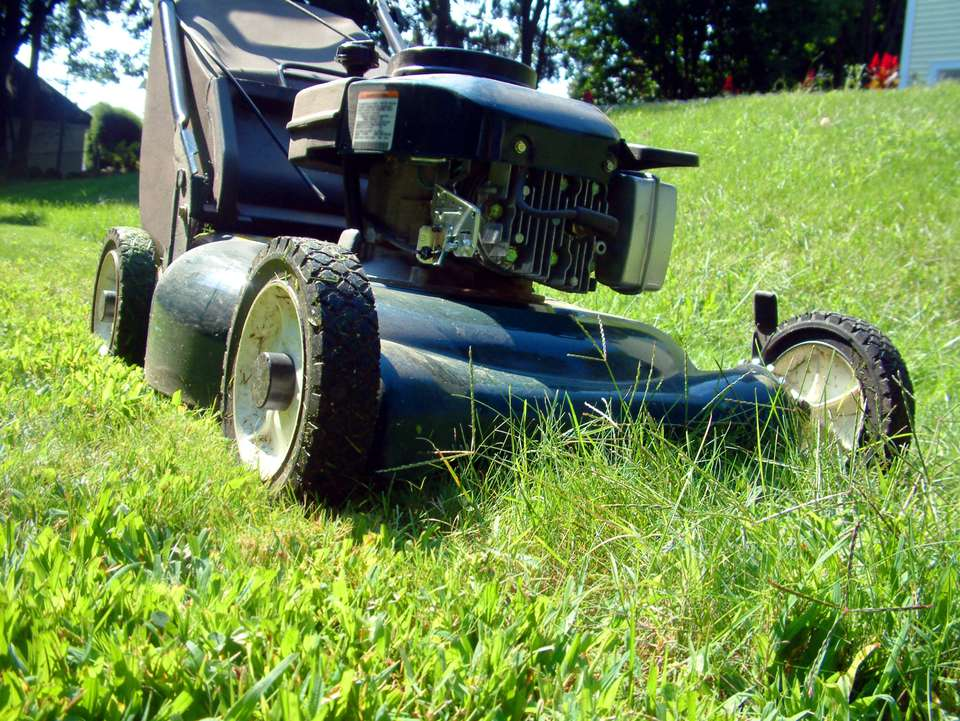 Closeup of lawn mower cutting grass.