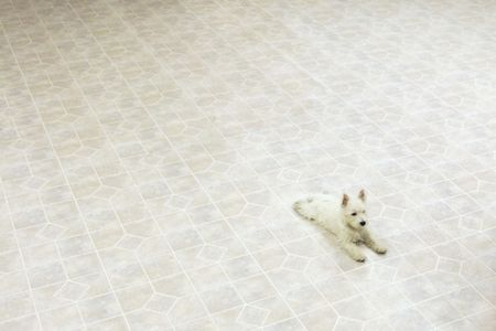 Instructions For Cleaning Linoleum Flooring - Cleaning linoleum floors with vinegar and baking soda