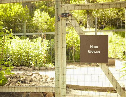 Pros And Cons Of Popular Types Of Deer Fencing