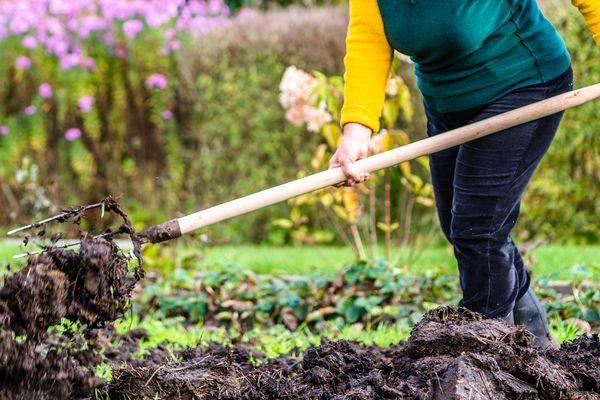 Fertilizer being spread in garden