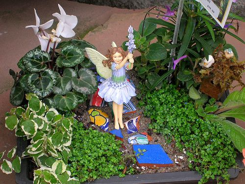 make your own fairy garden with elves gnomes and more - Fairy Garden Plants