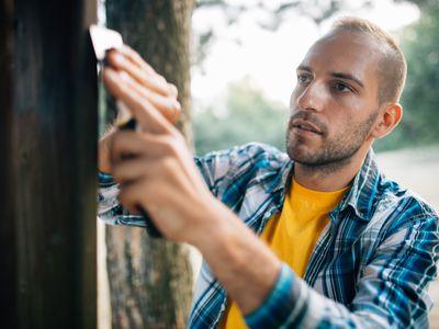 7 Free DIY Cabin Plans