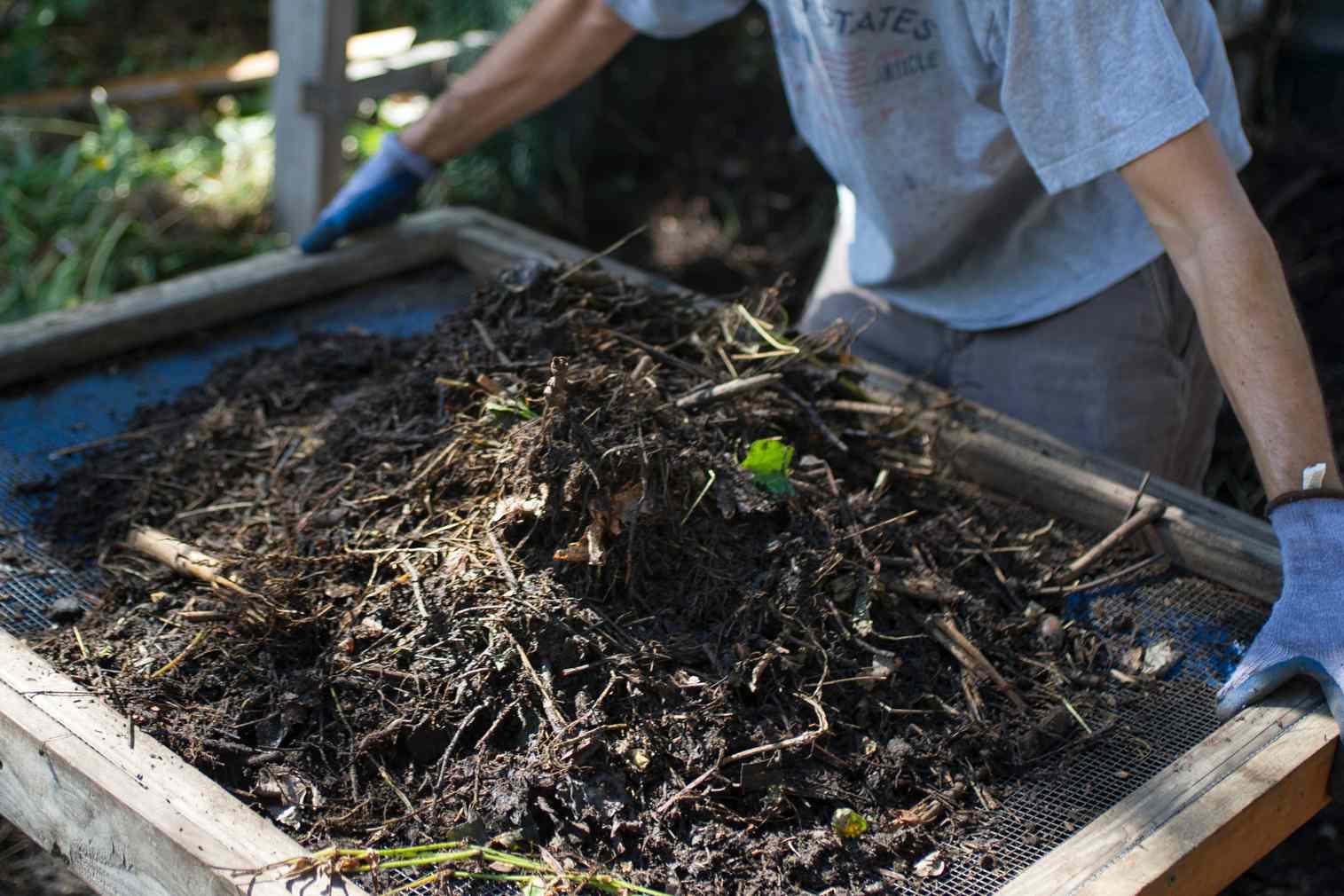 Compost screen