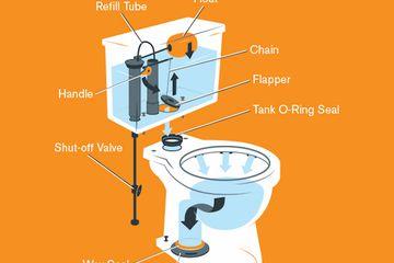 Standard Toilet