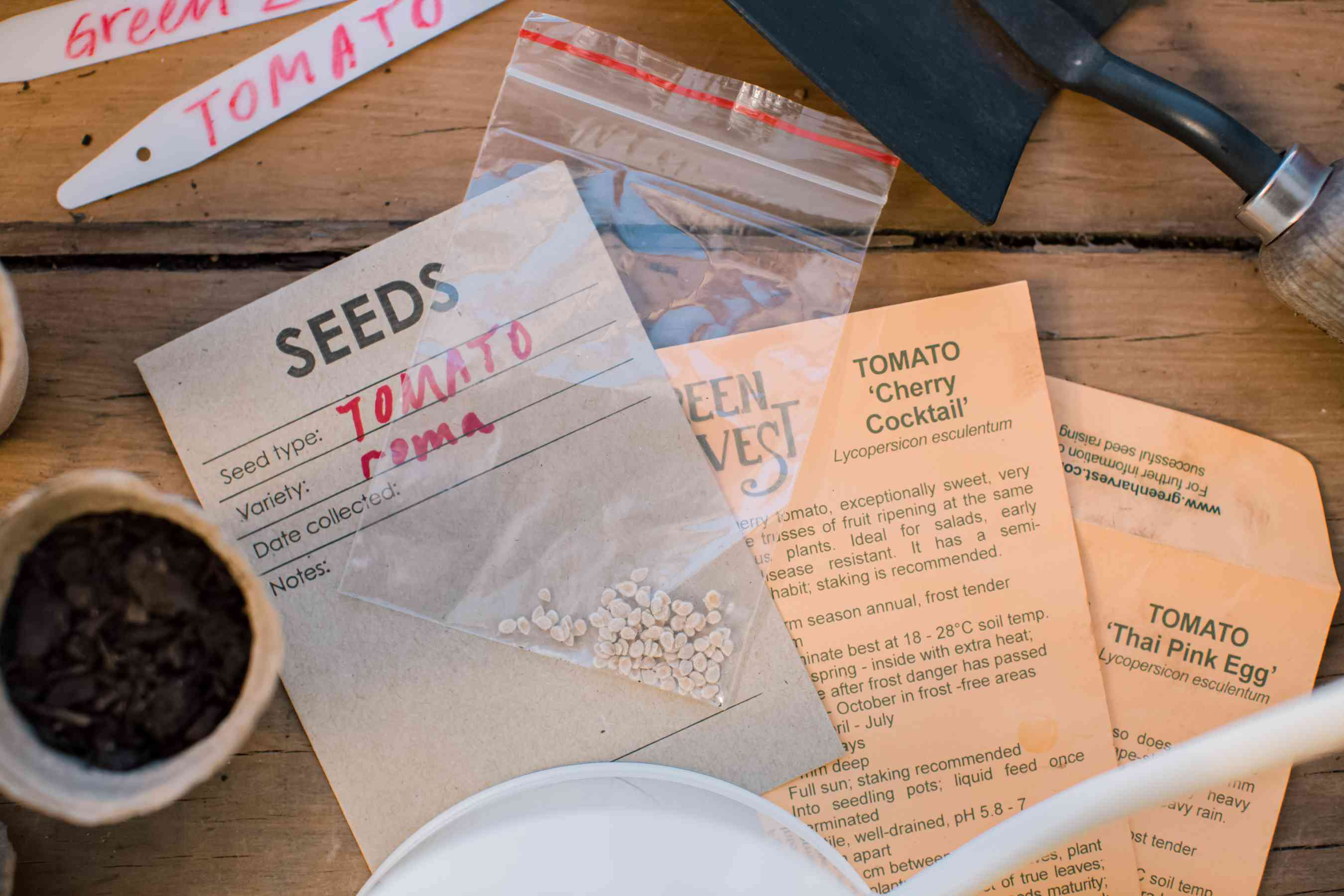 choosing tomato seeds