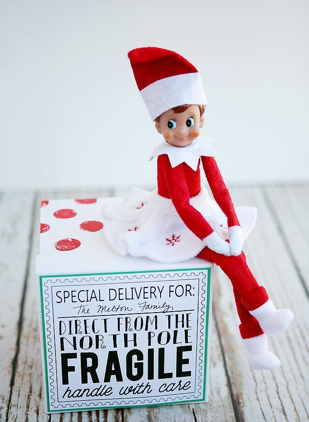 14 Creative Elf On The Shelf Ideas
