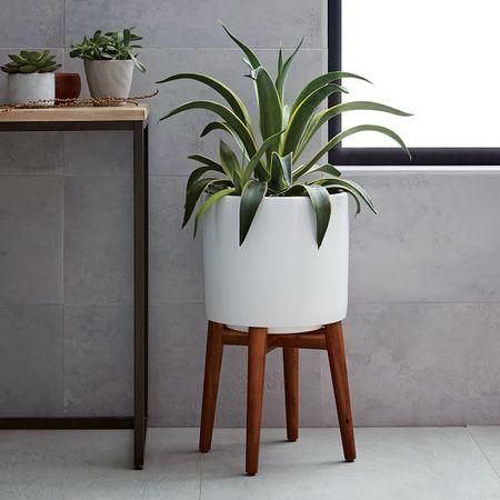 Lovely Mid Century Plant Pots