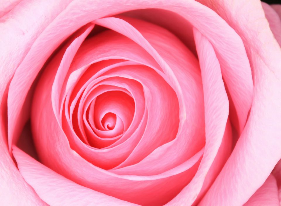 Pink color is the universal color of love and sweet sensuality. In feng shui, pink color is also an expression of the fire feng shui element energy.