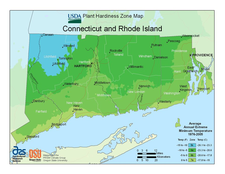 photo of the connecticut hardiness zones